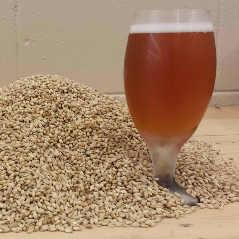 Briess Midnight Wheat Malt LARGE