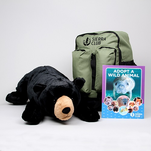 Jumbo Black Bear Set LARGE