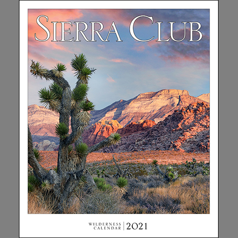 2021 Sierra Club Wall Calendar SWATCH