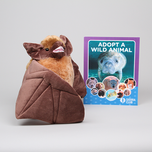 Adopt a Wild Animal Brown Bat LARGE