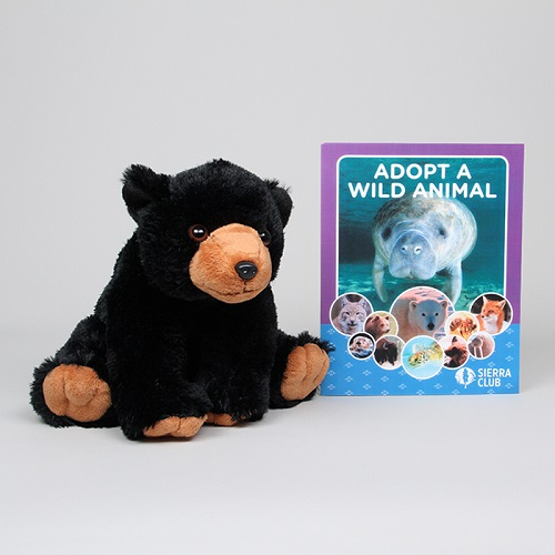 Adopt a Wild Black Bear LARGE