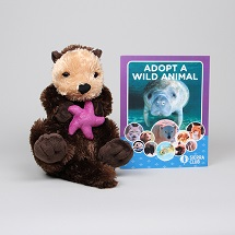Adopt a Wild Animal Sea Otter THUMBNAIL