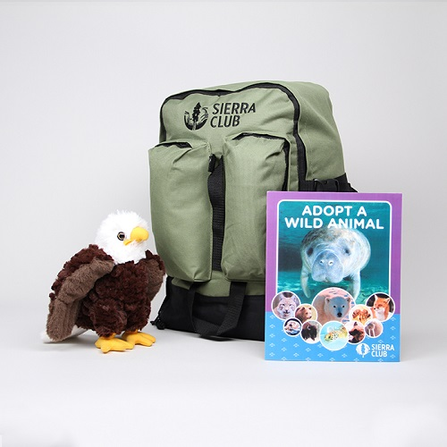 Bald Eagle Deluxe Set LARGE