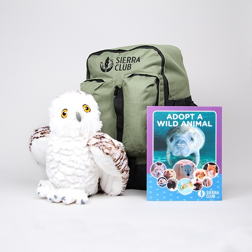 Snowy Owl Deluxe Set LARGE