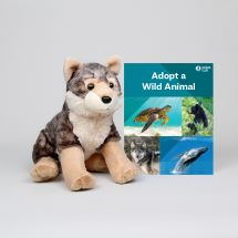 Adopt a Wild Animal Gray Wolf THUMBNAIL