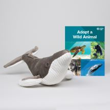 Adopt a Wild Animal Humpback Whale THUMBNAIL
