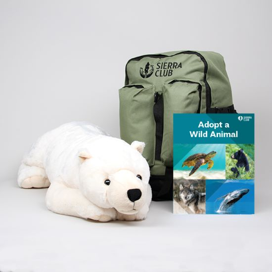 Adopt a Wild Animal Jumbo Polar Bear Set LARGE