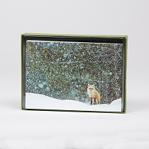 Sierra Club Red Fox Holiday Cards