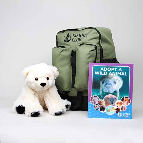 Polar Bear Deluxe Set