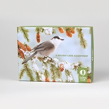 Sierra Club Winter Birds Assortment Holiday Cards
