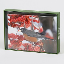 Sierra Club American Robin Holiday Cards THUMBNAIL