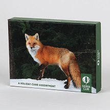 Sierra Club Winter Wildlife Holiday Card Assortment THUMBNAIL