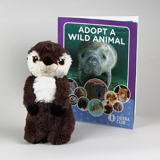 Adopt a Wild Animal River Otter LARGE