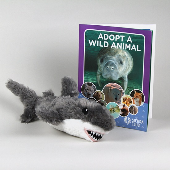 Adopt a Wild Animal Great White Shark LARGE