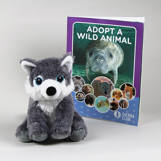Adopt a Wild Animal Gray Wolf LARGE