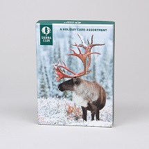 Sierra Club Winter Wildlife Holiday Card Assortment Mini-Thumbnail
