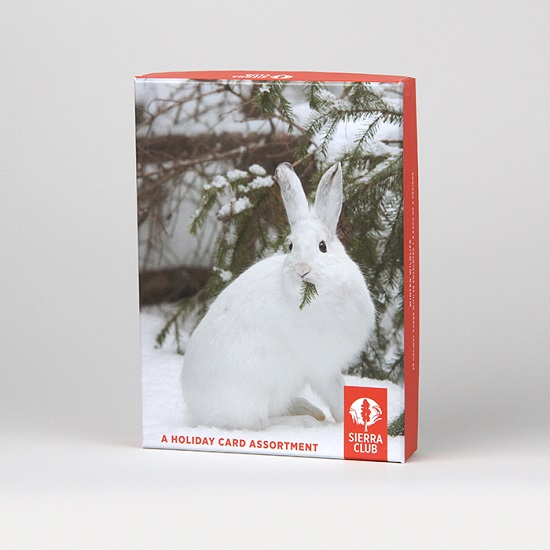 sierra club winter wildlife assortment holiday cards view enlarged image - Holiday Cards Online