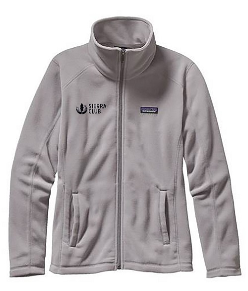 Patagonia Women's Grey Micro D Jacket