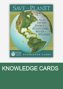 Knowledge Cards