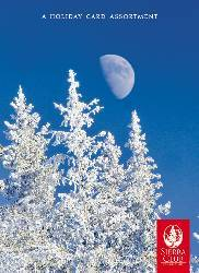 Sierra Club Winter Trees Holiday Card Assortment