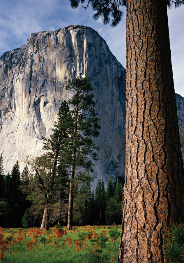 Sierra Club Yosemite Boxed Notecards Mini-Thumbnail