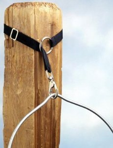 Extendable Bucket Strap