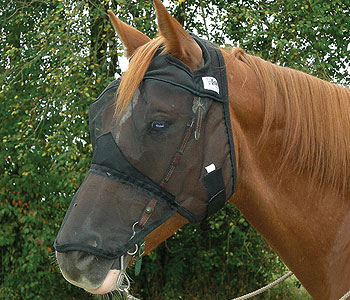 Cashel Quiet Ride Fly Mask MAIN