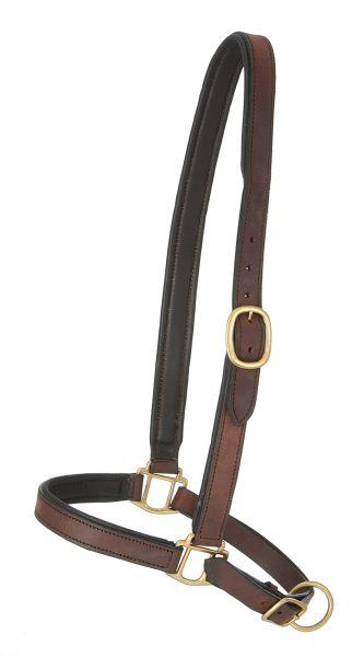 Leather Grooming Halter THUMBNAIL