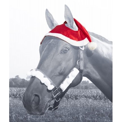 Holiday Santa Horse Hat THUMBNAIL