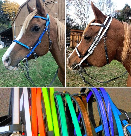 BRIDLE: Beta Halterbridle with Colored Overlay and Over The Poll Bit Hanger LARGE