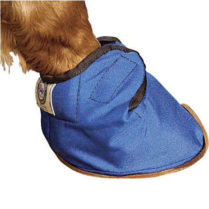 Bluegrass Equine Slipper THUMBNAIL