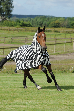 Bucas Buzz-Off Zebra Fly Sheet