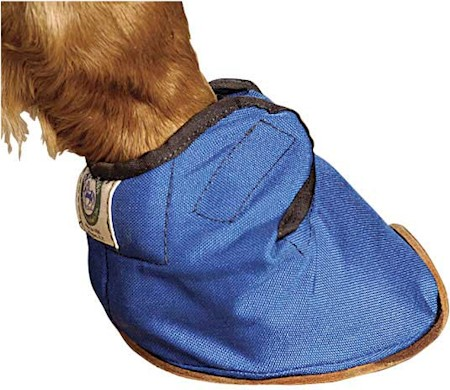 Bluegrass Equine Slipper MAIN