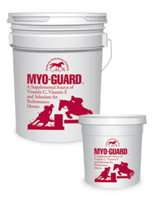 Myo-Guard MAIN