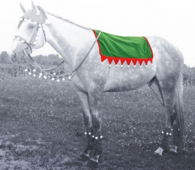Holiday Elf Saddle Pad Cover
