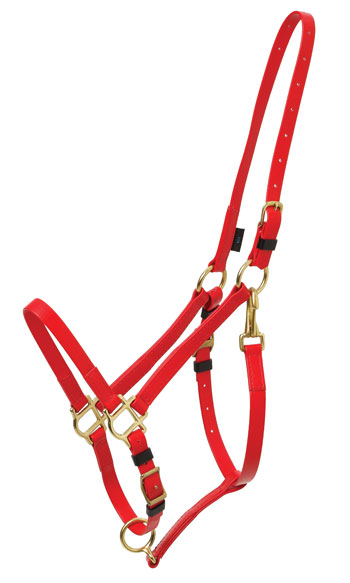 BRIDLE:  Zilco Deluxe Endurance Halter Part LARGE