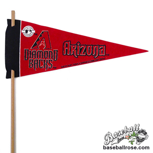 Arizona Diamondbacks Mini Felt Pennants MAIN