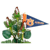 Auburn Tigers Gifts and Accessories