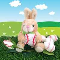 baseball rose bunny gift set THUMBNAIL