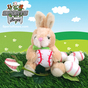 Baseball Rose & Bunny Gift Set MAIN
