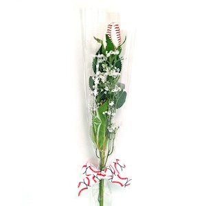 Baseball Rose in Cellophane Gift Arrangement MAIN