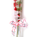 Baseball Rose Valentine's Day Gift Arrangement SWATCH