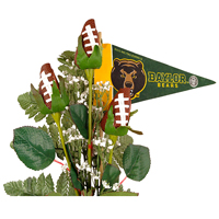 Baylor Bears Gifts and Accessories