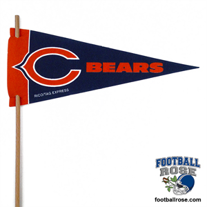 Chicago Bears Mini Felt Pennants MAIN