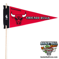 Chicago Bulls Mini Felt Pennant THUMBNAIL