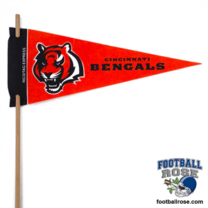 Cincinnati Bengals Mini Felt Pennants MAIN