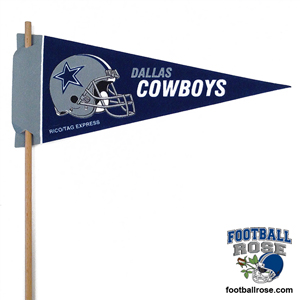 NFL Mini Felt Pennants_MAIN