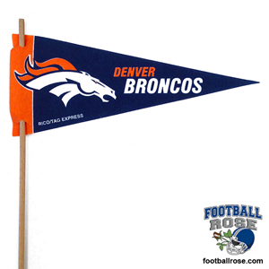 Denver Broncos Mini Felt Pennants