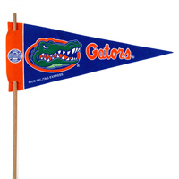 Florida Gators Mini Felt Pennants THUMBNAIL