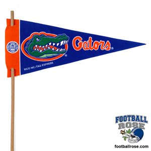 Florida Gators Mini Felt Pennants MAIN